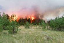 Вчера в районе произошло три пожара
